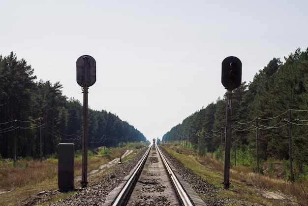 Train travels by rail along forest