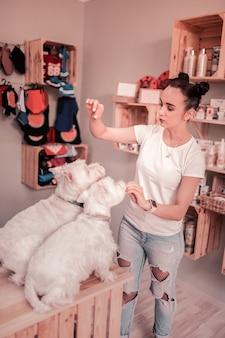 Дрессировка и кормление. темноволосая молодая женщина с булочками для волос тренирует и кормит своих собак