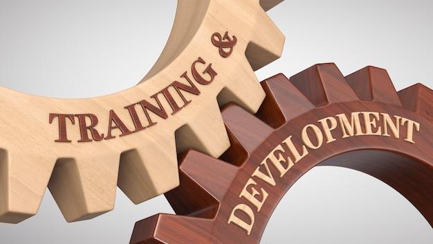 Training & development written on gear wheel