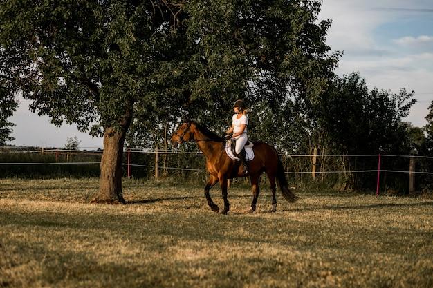 자연에서 훈련. 갈색 말에 흰색 스포츠 유니폼을 입은 젊은 라이더. 인생을 즐기는 시간.