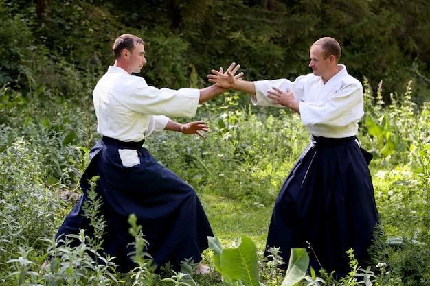 Training martial art aikido
