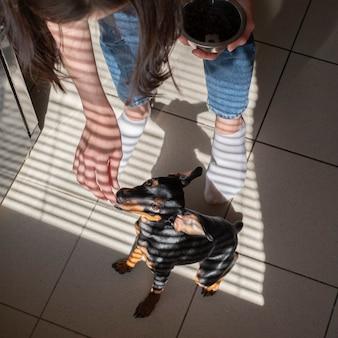 Дрессировка щенка в естественных домашних условиях.