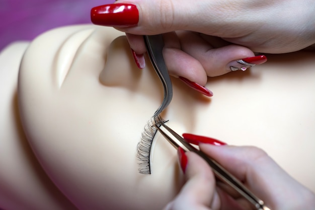 Training a young master to build eyelashes on a silicone mannequin. work with tweezers