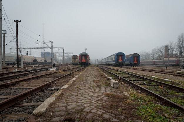 Trains waiting in a train station. a misty day