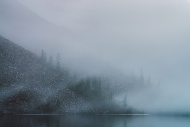 Tranquil mountain lake and stony steep slope with coniferous trees in dense fog.