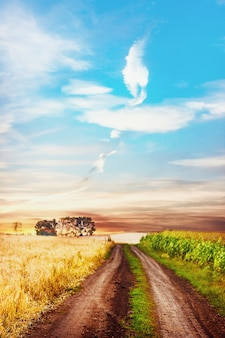 Tranquil rural scene with road between two fields.
