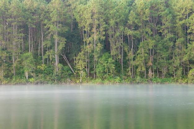 Спокойный пейзаж на берегу озера.