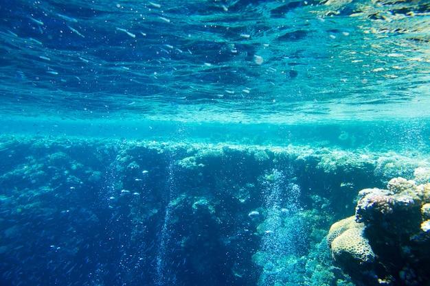복사 공간이있는 고요한 수중 장면
