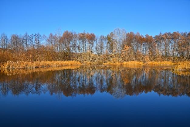 가을 나무와 물에 푸른 하늘이 반사된 고요한 수경