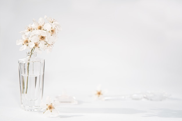 A transparent bottle of perfume and a sprig with white flowers next to which lies a glass rod and a cap