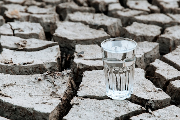 A transparent glass of clean drinking water stands in the middle of dry, cracked desert land. global warming concept. drought and water crisis