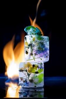 Прозрачные кубики льда на черном фоне с огнем и замороженными цветами внутри