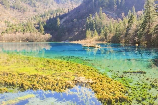 Прозрачное озеро и отражение гор на воде в национальном парке цзючжайгоу, китай