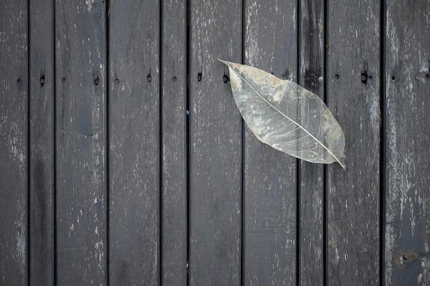 Transparent leaf on wooden floor background