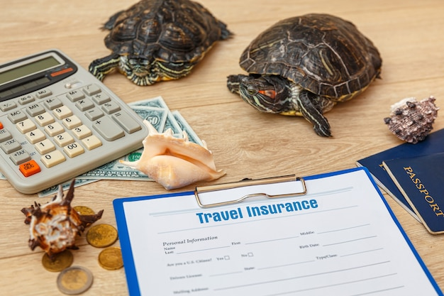 여행 보험 정책 및 redeared 거북이