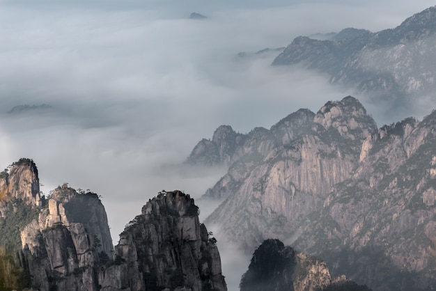 Travel landmark of huangshan mountain with pine trees, china anhui province.