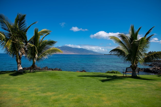 旅行夏休みの背景、晴れた空のビーチでのコンセプト。海の休日の熱帯のシーン。海景の自然。