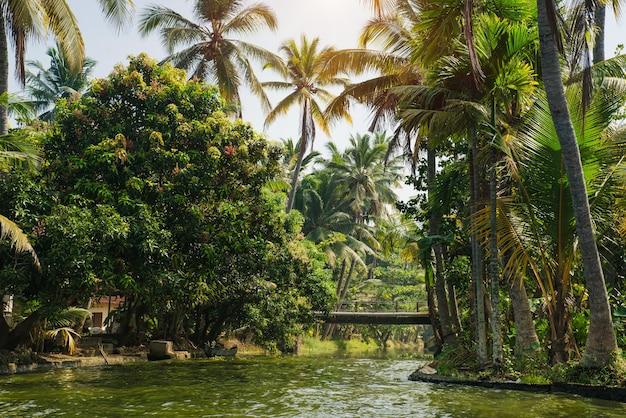 美しいケララの背水に旅行し、ヤシの木の風景、アレッピー、インドをお楽しみください