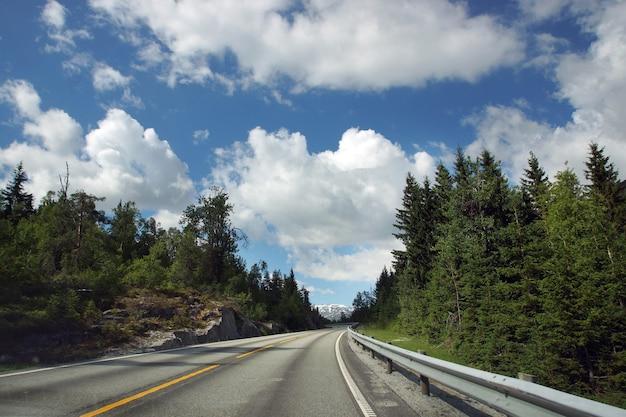 ノルウェーへの旅行、直接アスファルト道路は美しい曇り空の下で森を通り抜けます。
