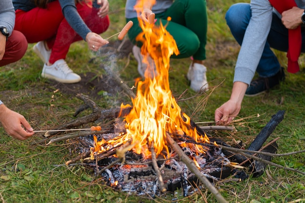 Travel, tourism, hike, picnic and people concept - group of happy friends frying sausages on campfire