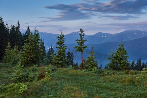 Путешествие, треккинг. летний пейзаж - горы, зеленая трава, деревья и голубое небо.