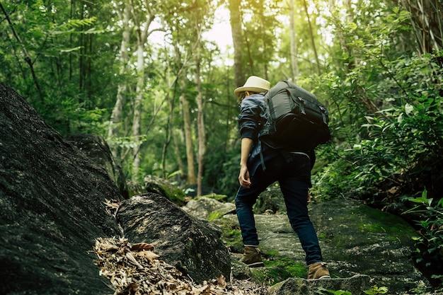 여행자는 숲을 통해 산의 정상까지 하이킹합니다.