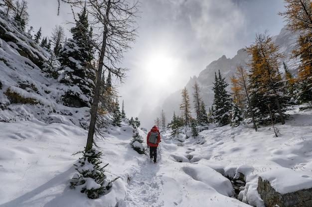 캐나다 요호 국립공원의 눈보라 속에서 햇빛과 함께 눈 덮인 언덕을 하이킹하는 여행자