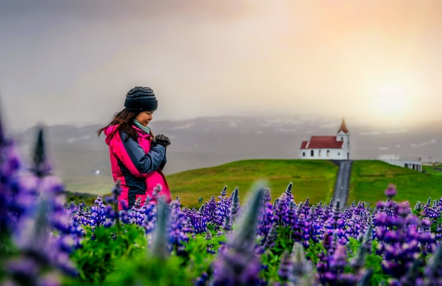 Traveler in iceland. church and lupine flowers.