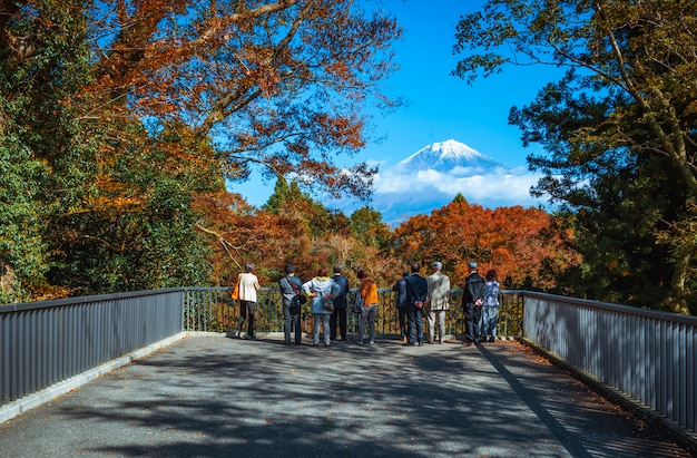 Traveler looking mt.fuji and colorful autumn leaf at shiraito falls in fujinomiya, shizuoka, japan.