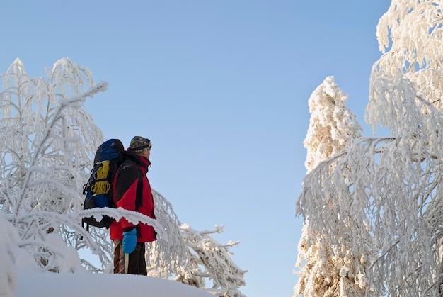 目をそらしている美しい雪に覆われた木々と冬の森のバックパックを持つ旅行者の男