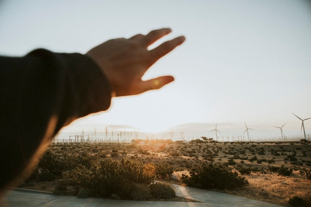 Traveler in the palm springs desert, usa
