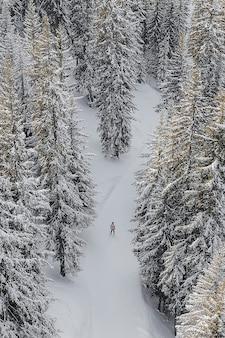 Traveler skiing through the mountain in verbier, switzerland