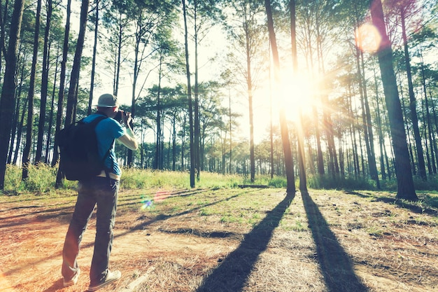Traveler taking a photo in forest with sunlight in the morning.