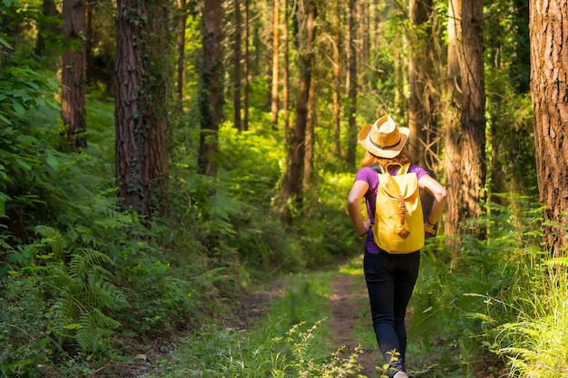 Traveler woman with a hat on her back and looking at the forest pines