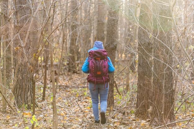 森の中を歩く旅行者の女性、背面図