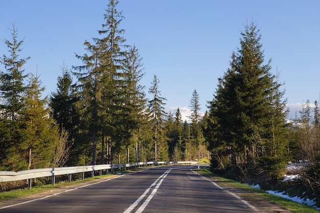 Travelling by car. the track in the mountains through the forest. polish tatras.
