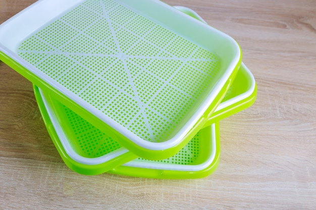 Trays for growing microgreens. the process of planting seeds in microgreening trays. germination of seeds.