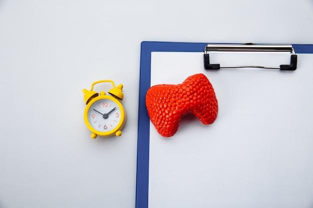 Лечение и профилактика щитовидной железы. модель анатомического органа на столе врача