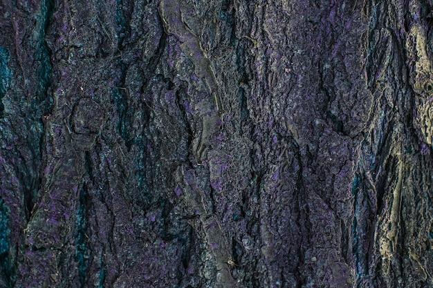 Предпосылка текстуры коры дерева. старый деревянный ствол дерева текстурированный узор