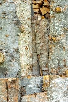 나무 껍질 질감