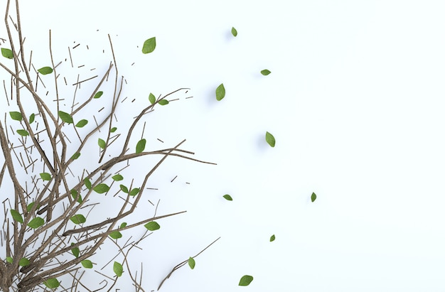 Tree branch and blow leaves on white cement wall. background 3d render.