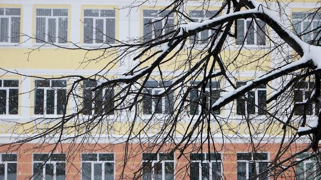 눈으로 덮인 나뭇가지들. 눈이 내리는 동안 아파트 건물입니다. 도시에 떨어지는 눈. 겨울 도시 장면입니다.
