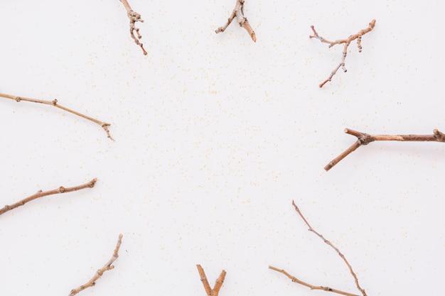 테이블에 나뭇 가지