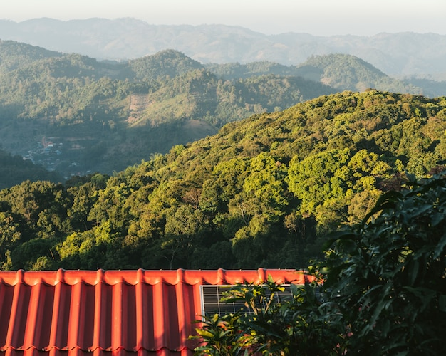 Tree branches on red house roof with solar cell panels and mountain