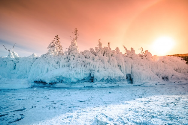 Tree covered with ice and snow at sunset in the shore of the soaring lake baikal in winter, siberia, russia.