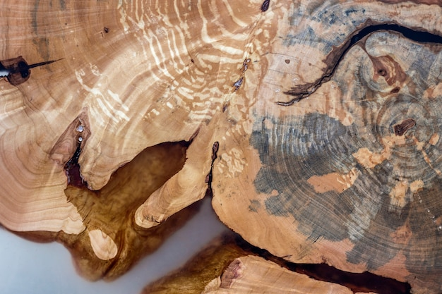 Tree cut slice section, uneven shape, natural texture, soft colored brown and yellow stump natural vintage cracked old colorful . do it yourself art concept.