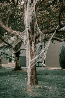 Tree decorated with skeleton and spiderweb