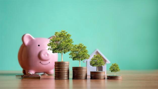 동전 더미에서 자라는 나무, 신용 개념. 부동산 사다리 금융 모기지 주거용 부동산