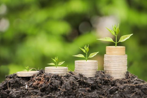 お金の概念を保存するためのコインスタックで成長しているツリー。