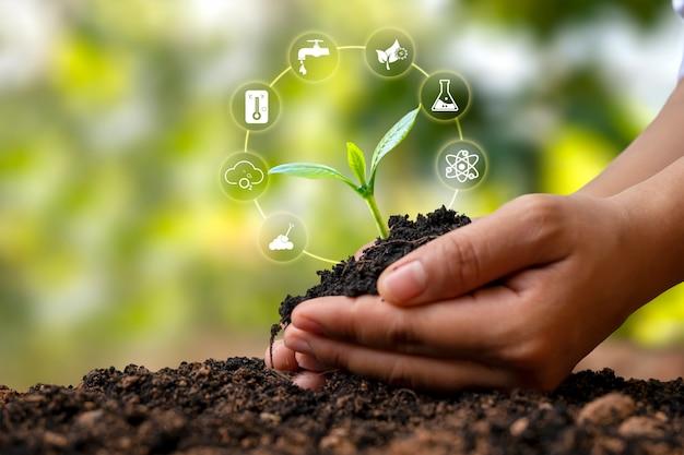 人間の手の土壌で成長する木と植物成長因子アイコン植物成長の概念
